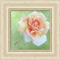 Floral shabby chic framed print by Sharon Bignell Fine Art