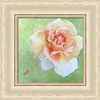 Floral shabby chic framed print by Sharon Bignell Fine Art